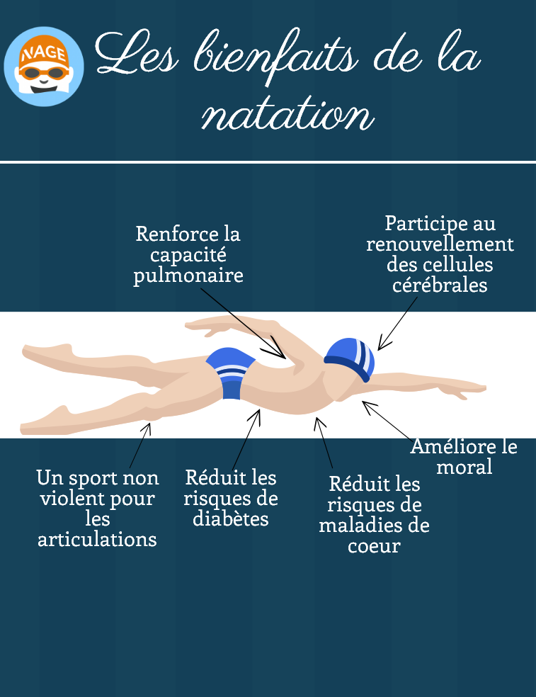 infographie-natation